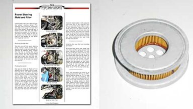 123/126 Power Steering Reservoir Filter